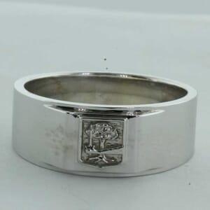 6382 - 8mm family crest ring